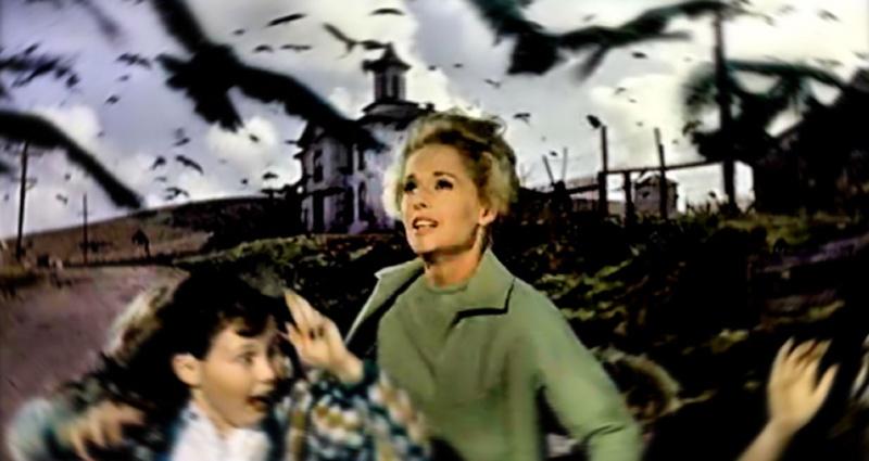 Когда классический хоррор оживает: необъяснимое нашествие черных птиц в Техасе