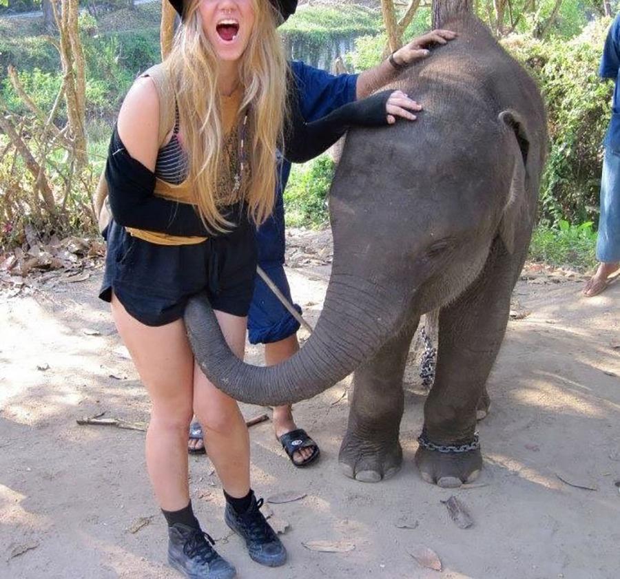 И опять про слонов и слоников