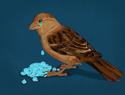 Птички плачут...