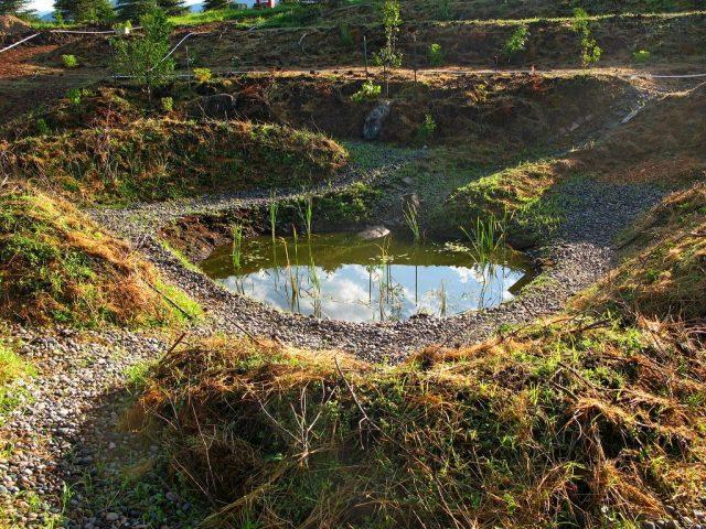 Кратерный сад от Зеппа Хольцера, или Как приобщиться к пермакультуре? сад