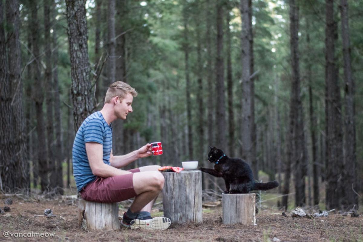 Парень продал дом и три года путешествует с кошкой