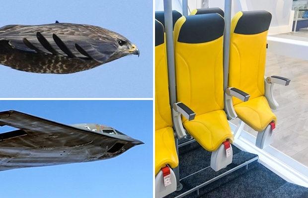 8 «почему» о самолётах, которые вы не решались задать