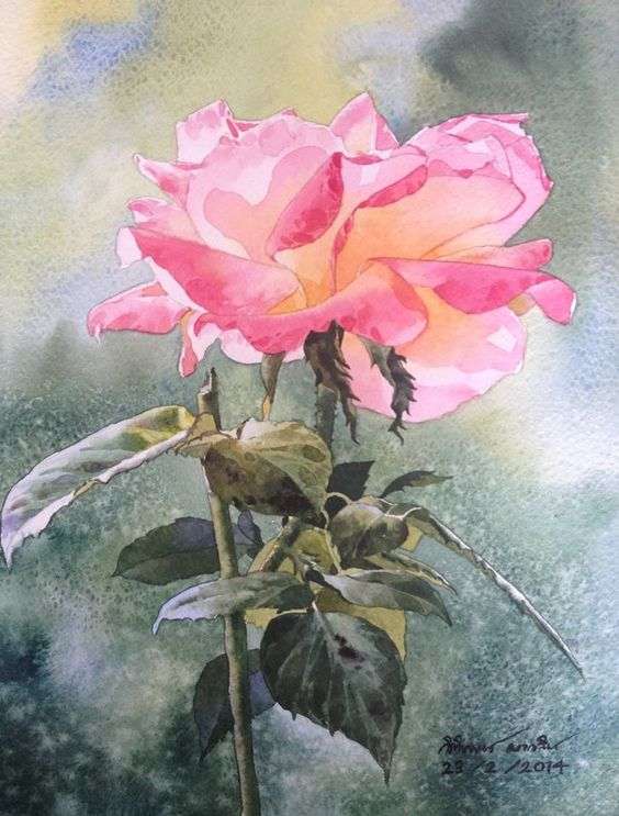 Rose painting: