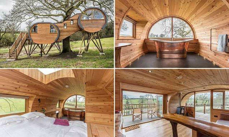 В Англии построили  эко-особняк на дереве