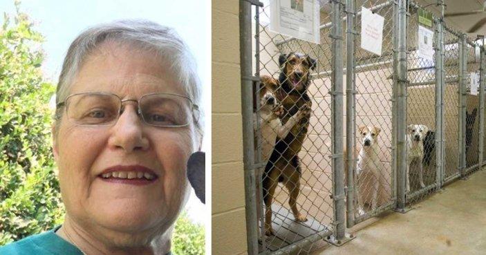 Она пришла в приют и попросила самую ненужную собаку
