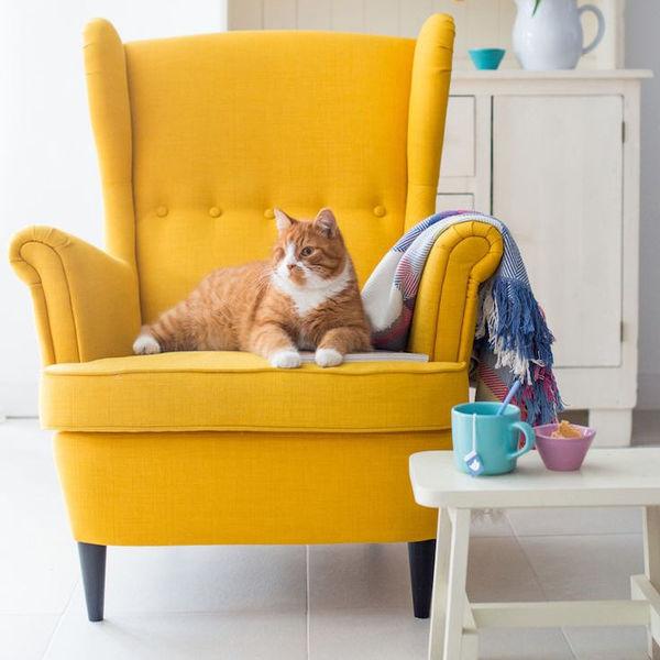 Что говорит о вас любимое кресло