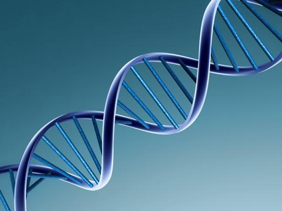 Живучие научные теории, которые оказались ошибочными