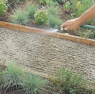 Садовая дорожка своими руками handmake,мастер-классы,поделки для сада,поделки своими руками,полезные советы,разное