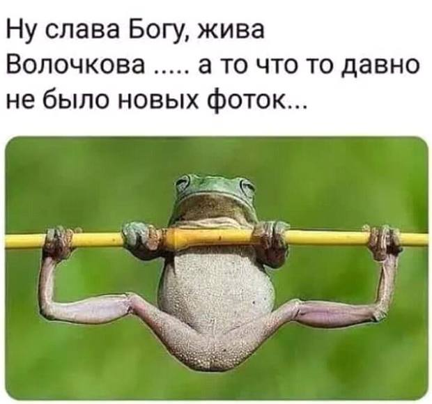 4809770_UUDevka66 (620x580, 36Kb)