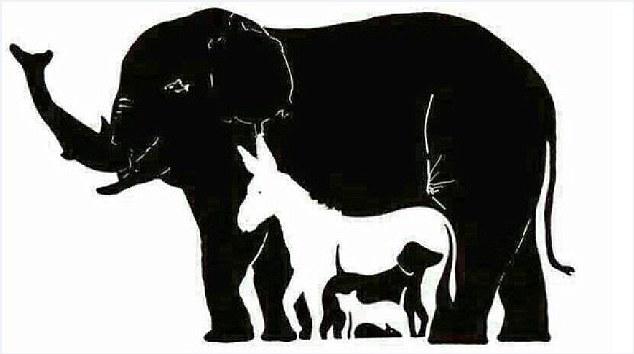 Суперзадачка «ломает мозг»: сколько животных вы видите на картинке