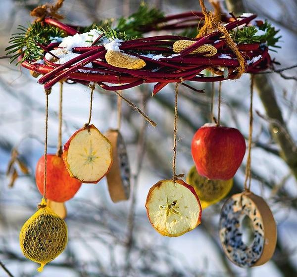 Покормите птиц зимой, или 6 креативных кормушек своими руками для дома и дачи,мастер-класс