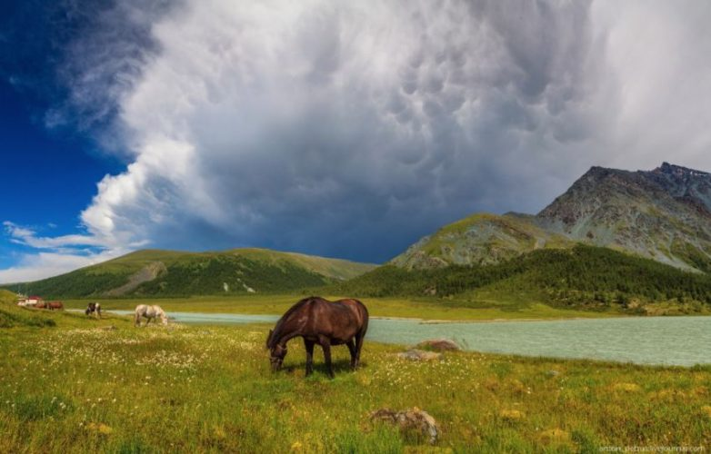 Таинственный и непостижимый Алтай Алтай,пейзажи,Россия