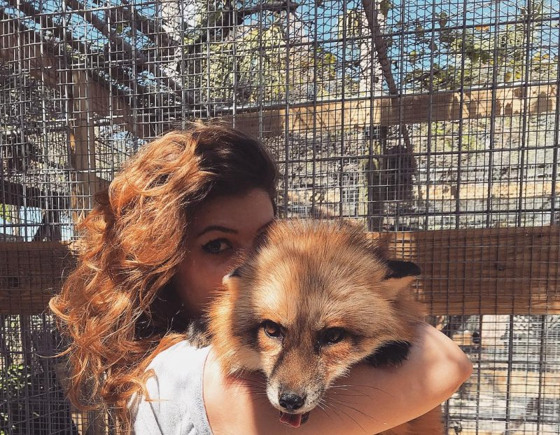 Лучшие друзья этой девушки - огромные аллигаторы и дикие волки taylor francis, аллигатор, девушка, дикая природа