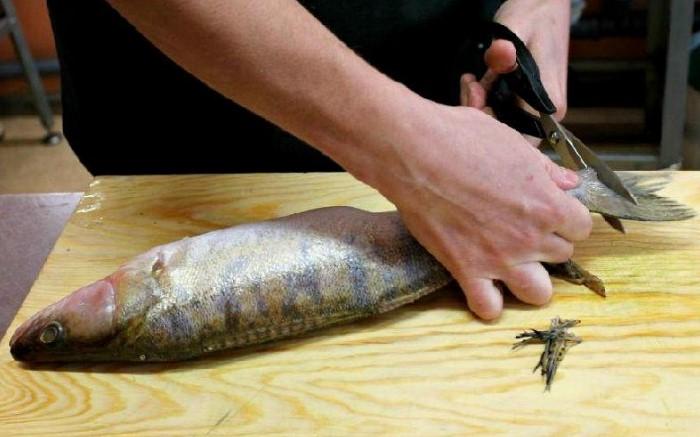 4 варианта, как быстро почистить рыбу, чтобы чешуя не летела во все стороны готовим дома,полезные советы