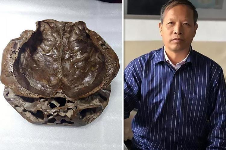 Охотник за НЛО показал фото «реального черепа пришельцев» наука, нло, охотник, пришелец, ученые, череп