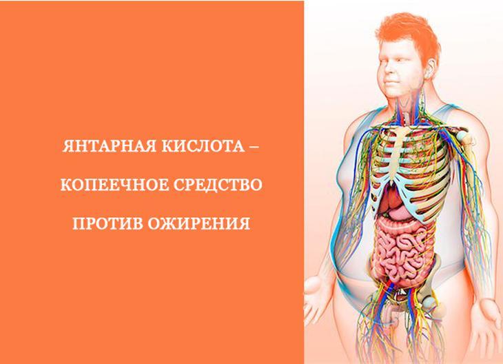 Янтарная кислота – копеечное средство против ожирения