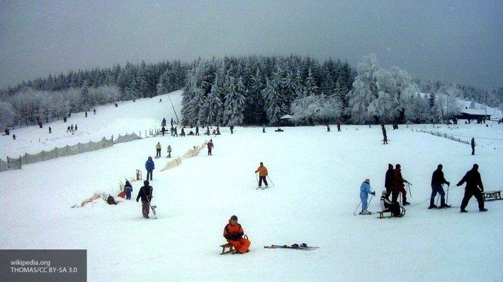 В Ленобласти отметили международный день снега