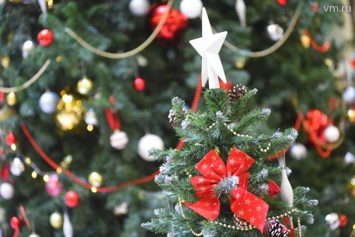 Правительство Москвы подарило столице Болгарии 13-метровую ель