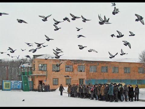 На Украине будет новый праздник — день вертухая