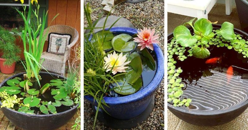 23 прекрасных идеи мини-пруда для красивого сада для дома и дачи,ландшафтный дизайн