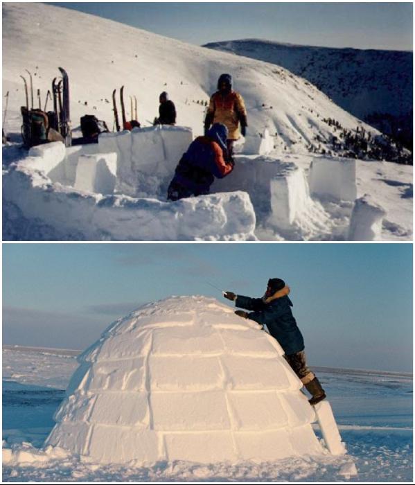 Обычный человек не сможет построить иглу самостоятельно, этому мастерству эскимосы учатся всю жизнь.   Фото: dead-v-life.ru/ bolshoyvopros.ru.