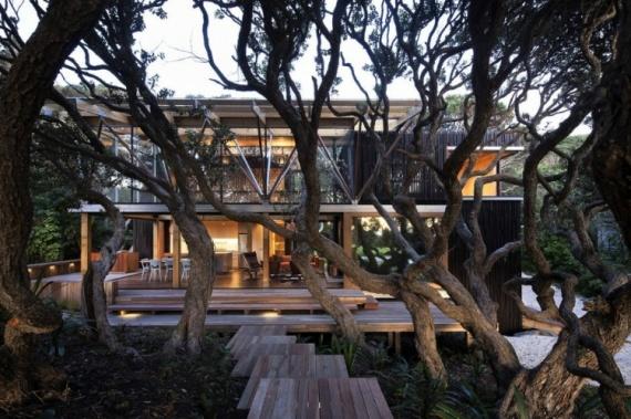 Быстрорастущие деревья защитят дом от солнца и помогут уменьшить счет за электричество