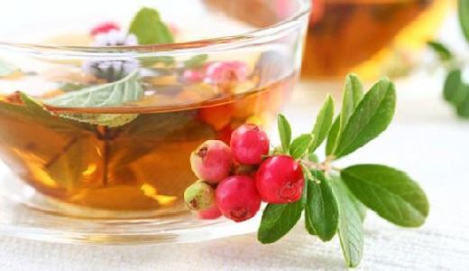 Как пить лекарственные травы