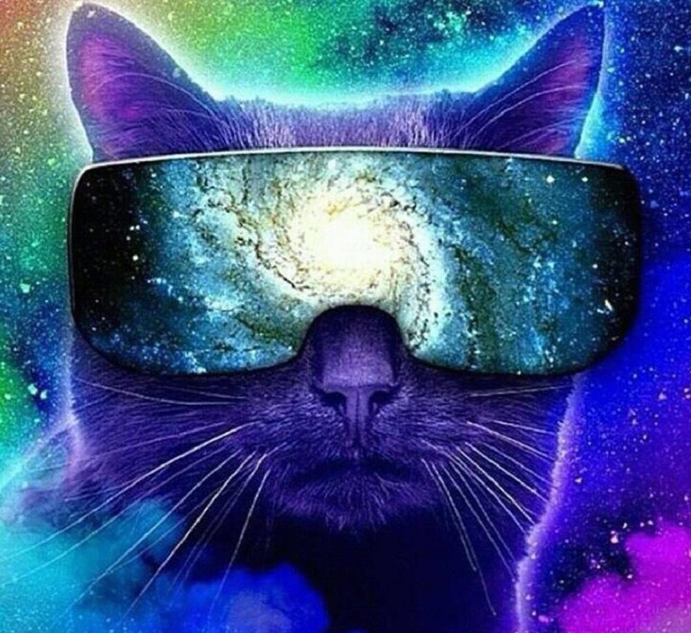 Котики, которые всегда с тобой