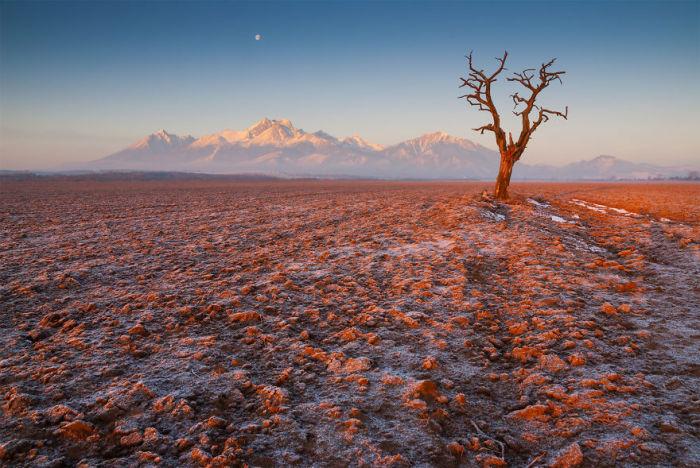 Вспаханные равнины мирно ожидают прихода весны, присыпанные снежной крупой.