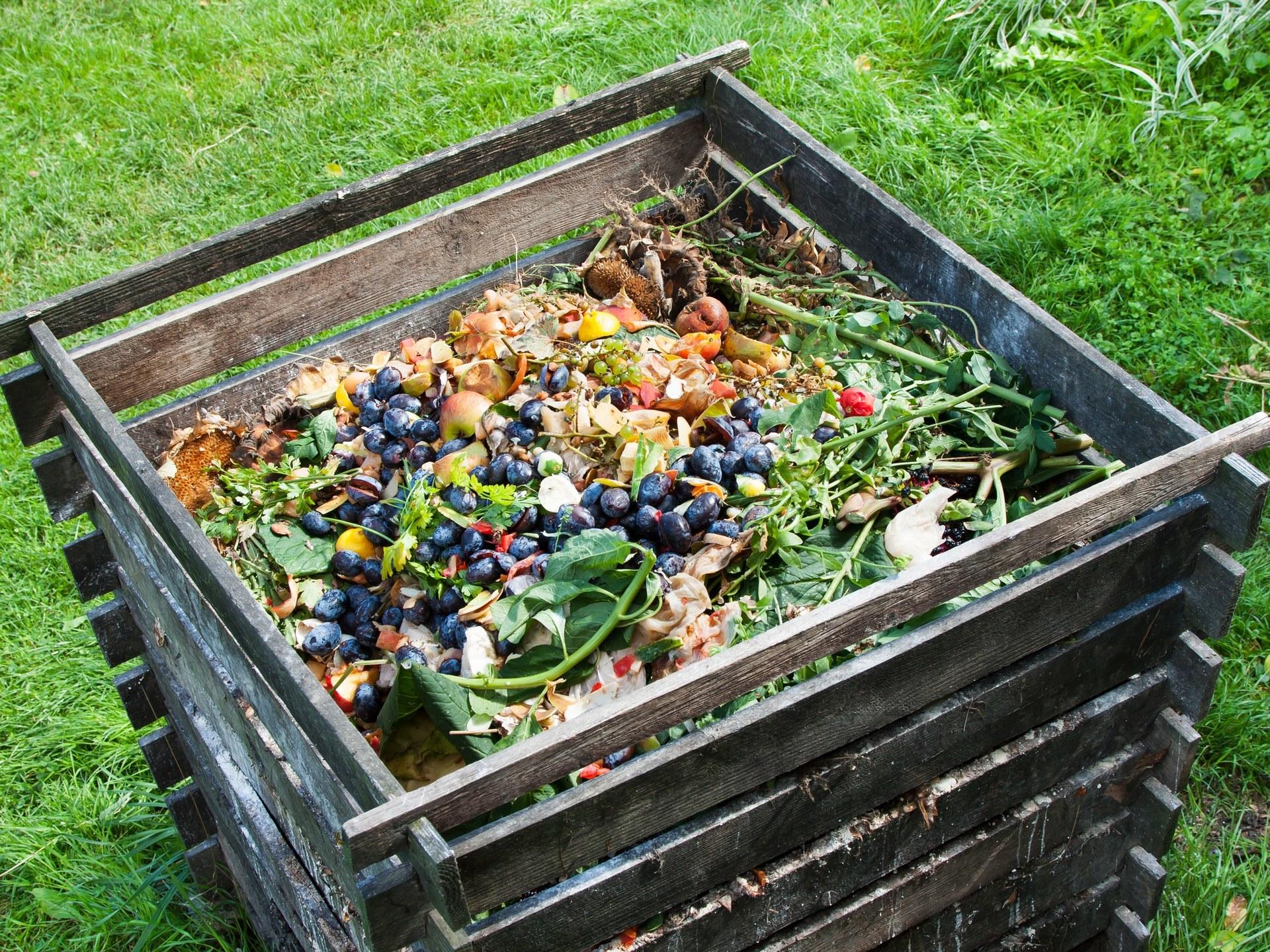 Отходы несем в огороды огород