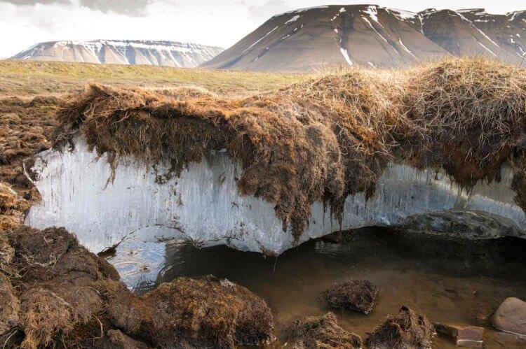 Вечная мерзлота, климат