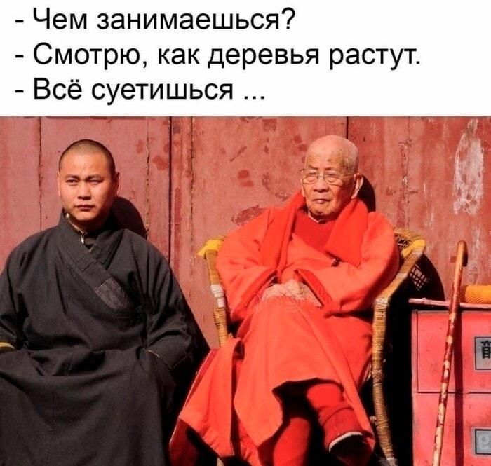 https://mtdata.ru/u14/photoF225/20424254437-0/original.jpeg#20424254437