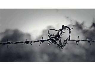 Украина-2020: цветы на колючке. Режим Зеленского затягивает удавку? казаки,украина