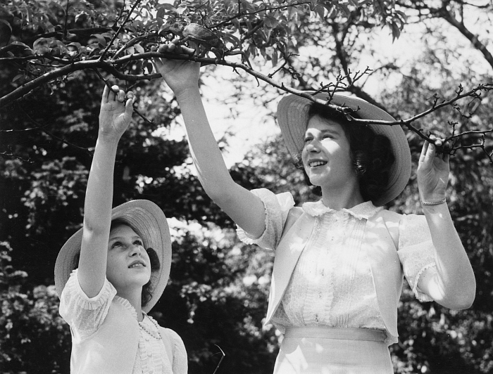 Принцесса Елизавета и принцесса Маргарет, 1941 год. фото № 2