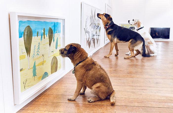 Запах старых ботинок и миска для еды вместо ванны: современное искусство для собак