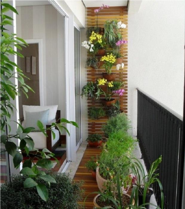 При входе в такой светлый и озелененный растениями балкон, всегда будет ощущаться лето.