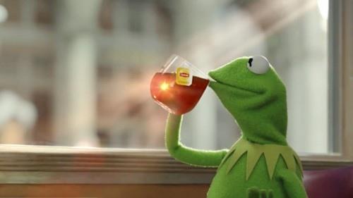 Когда ты - зеленая лягушка, пьющая черный чай