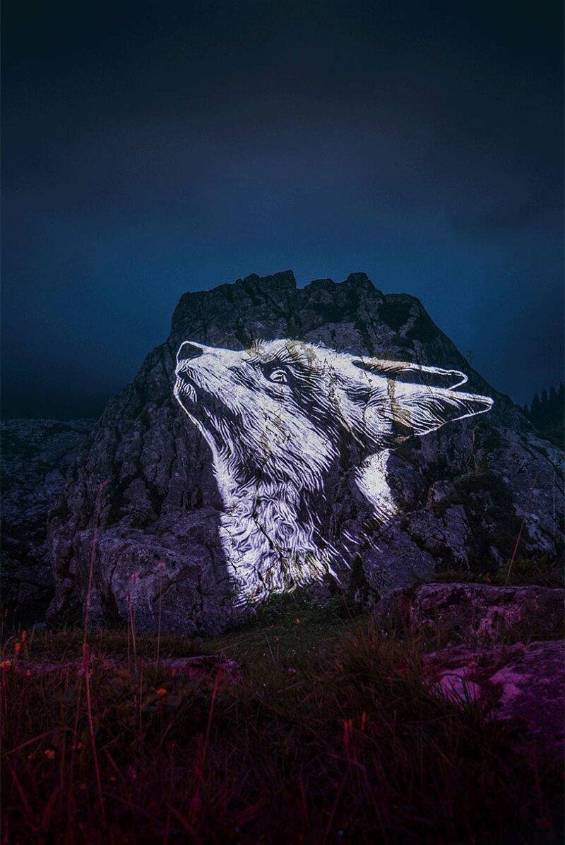 11. Лиса горы, животные, исчезновение, рисунки, спасение, художник