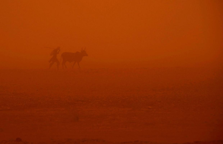 Красота песчаных бурь в фотографиях