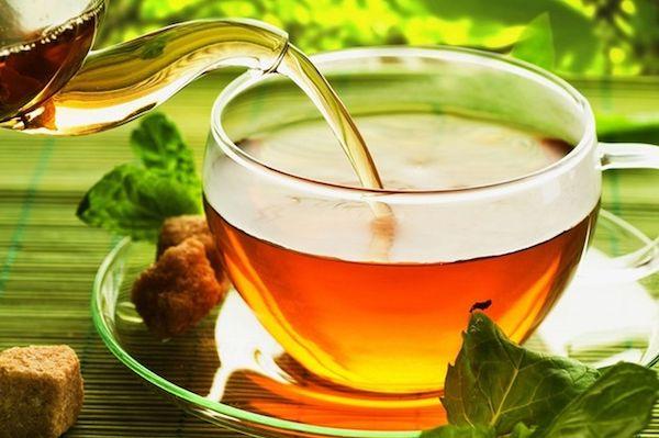 Соленый чай из солянки холмовой