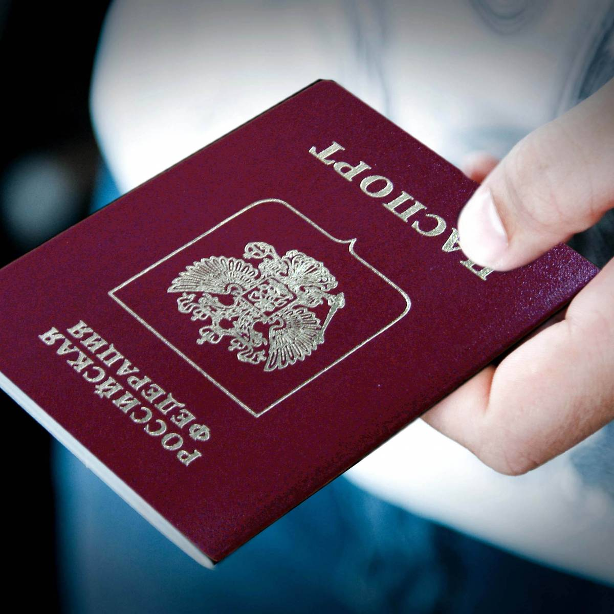 Упрощение получения гражданс…
