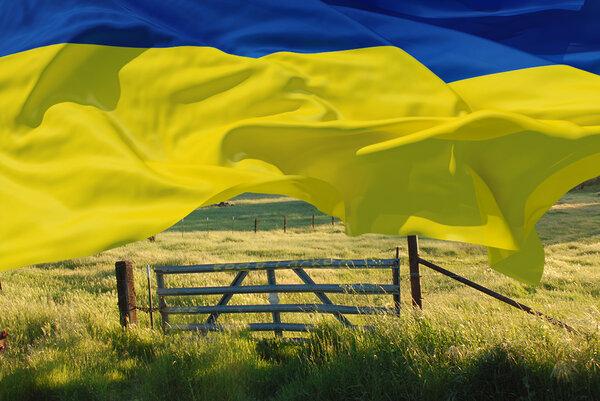 «Украину пытаются превратить…