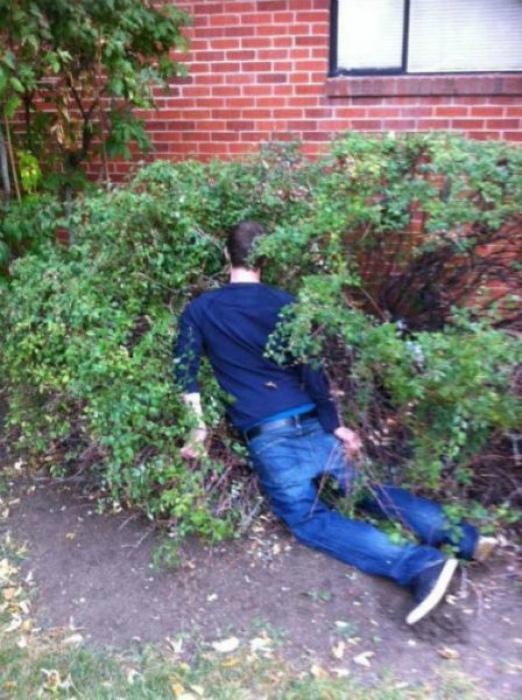 Сработала сила притяжения. | Фото: Pixmafia.com.