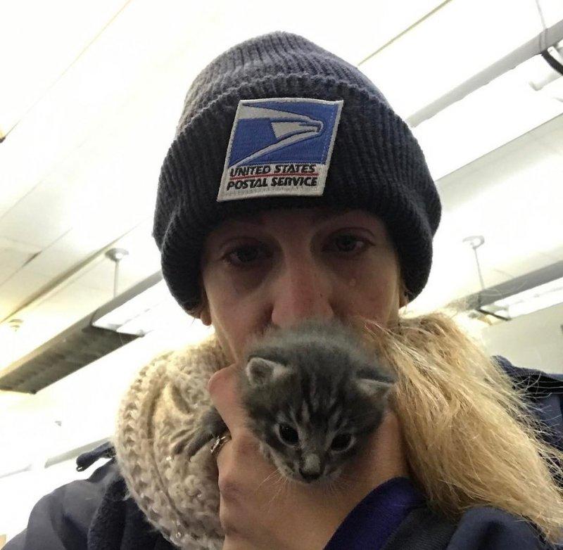 Почтальон услышала жалобный плач, и не смогла пройти мимо история, история спасения, коты, котята, кошки, помощь животным, спасение животных