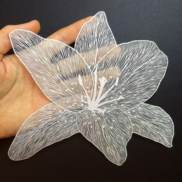М. Вайт мастерски работает ножом вырезая из бумаги подобно искусному художнику, работающему кистью или карандашами.