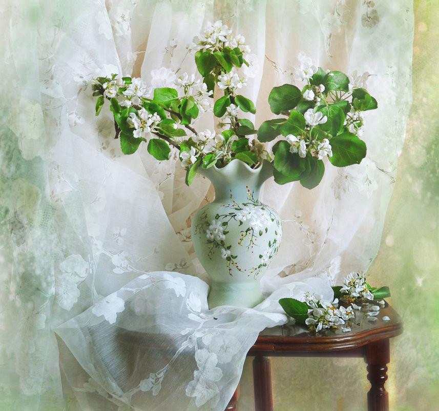Весенняя нежность, фотограф - Валентина Колова