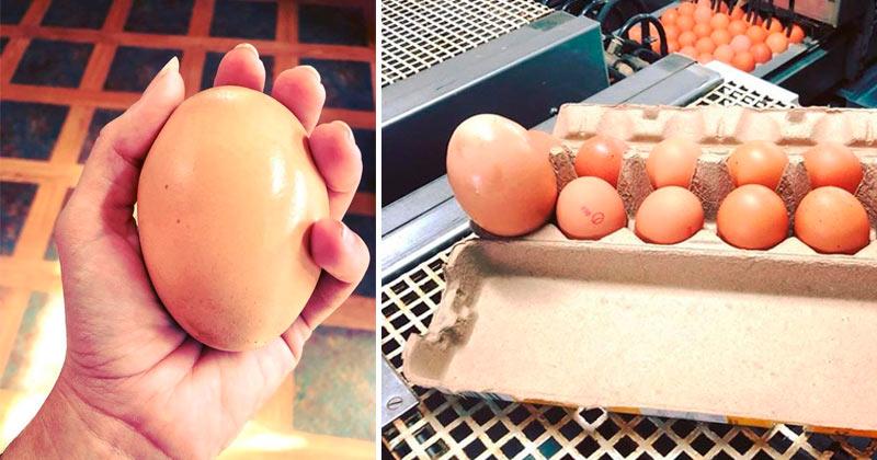 Неожиданная находка: курица снесла гигантское яйцо с сюрпризом внутри