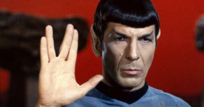 10 общепринятых жестов руками, которые могут означать разные вещи жесты