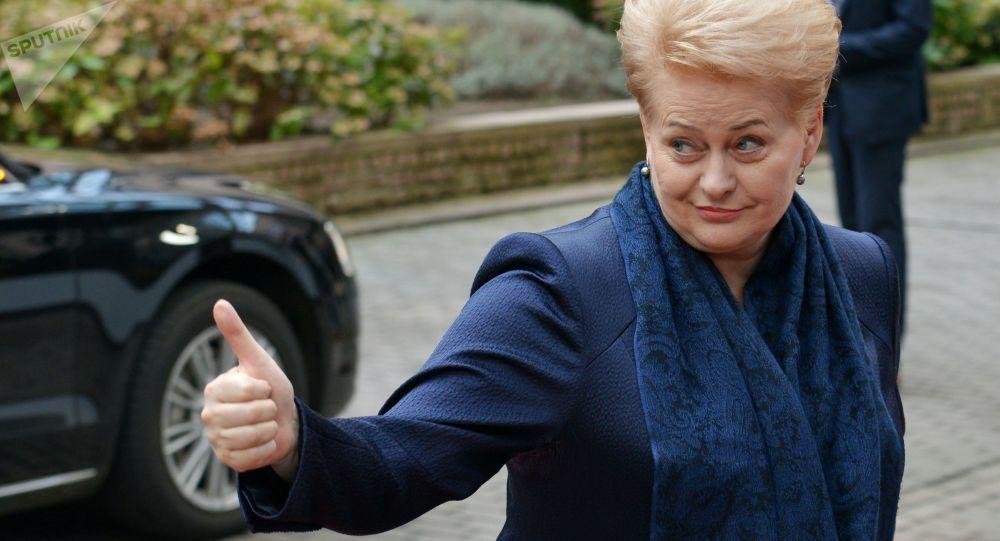 Смена «окраса»: почему Грибаускайте высказалась за сотрудничество с РФ?