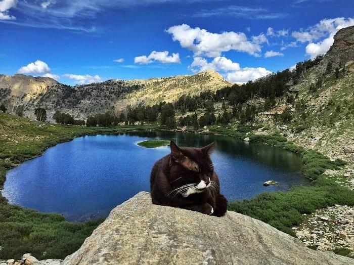 Легкая йога - окруженная удивительной горной панорамой - это то, что восстанавливает мой крепкий сон.